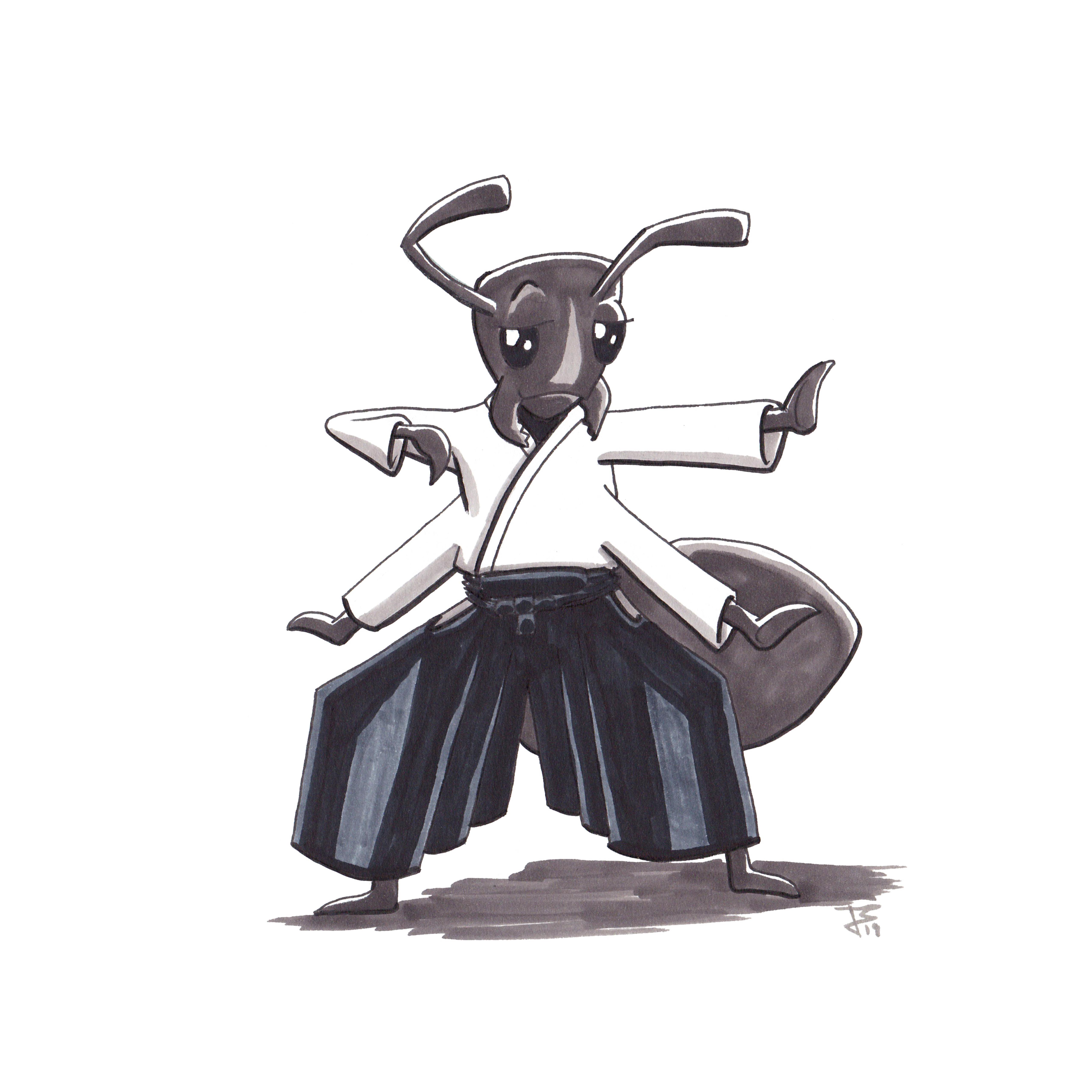 Aikido Animals_049