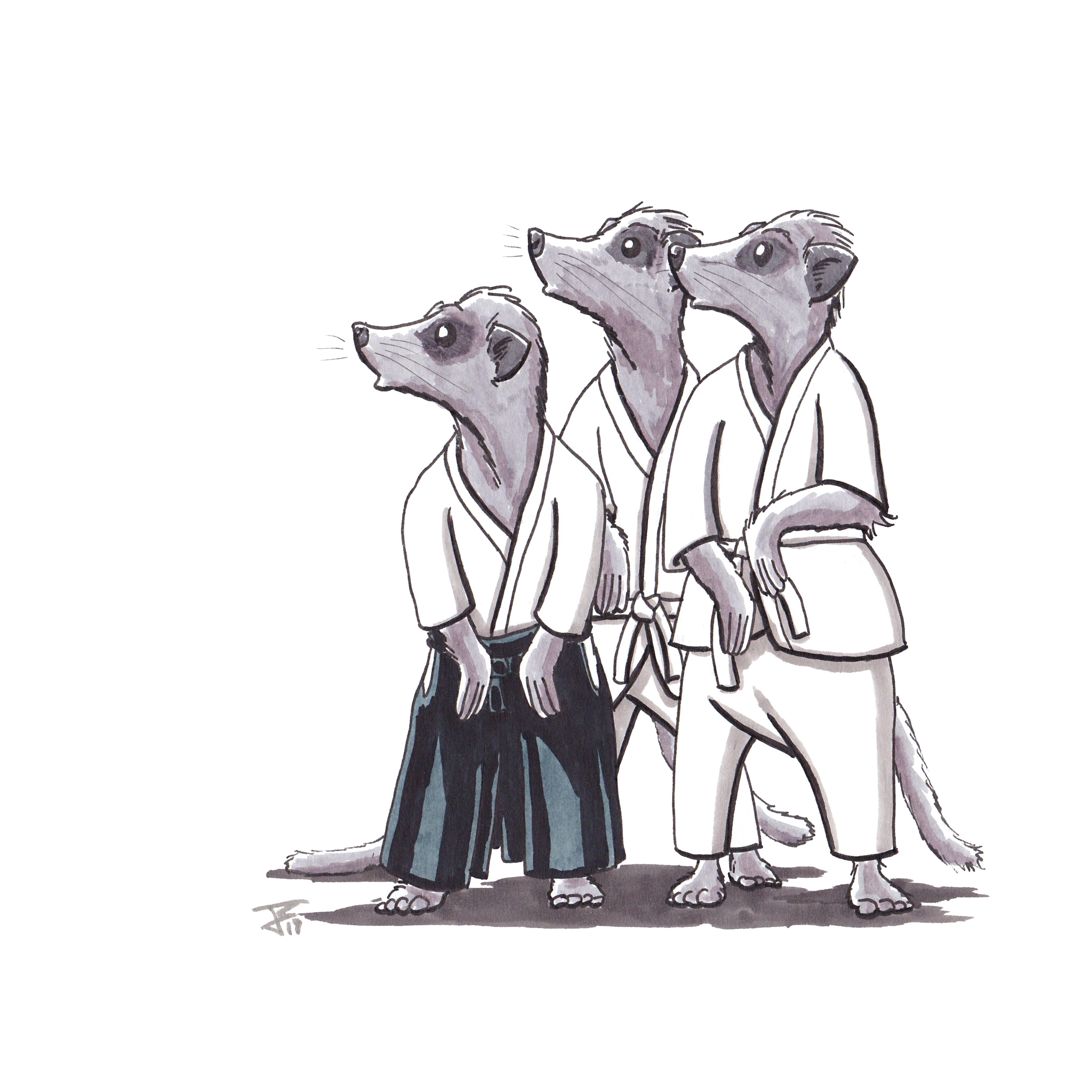 Aikido Animals_055