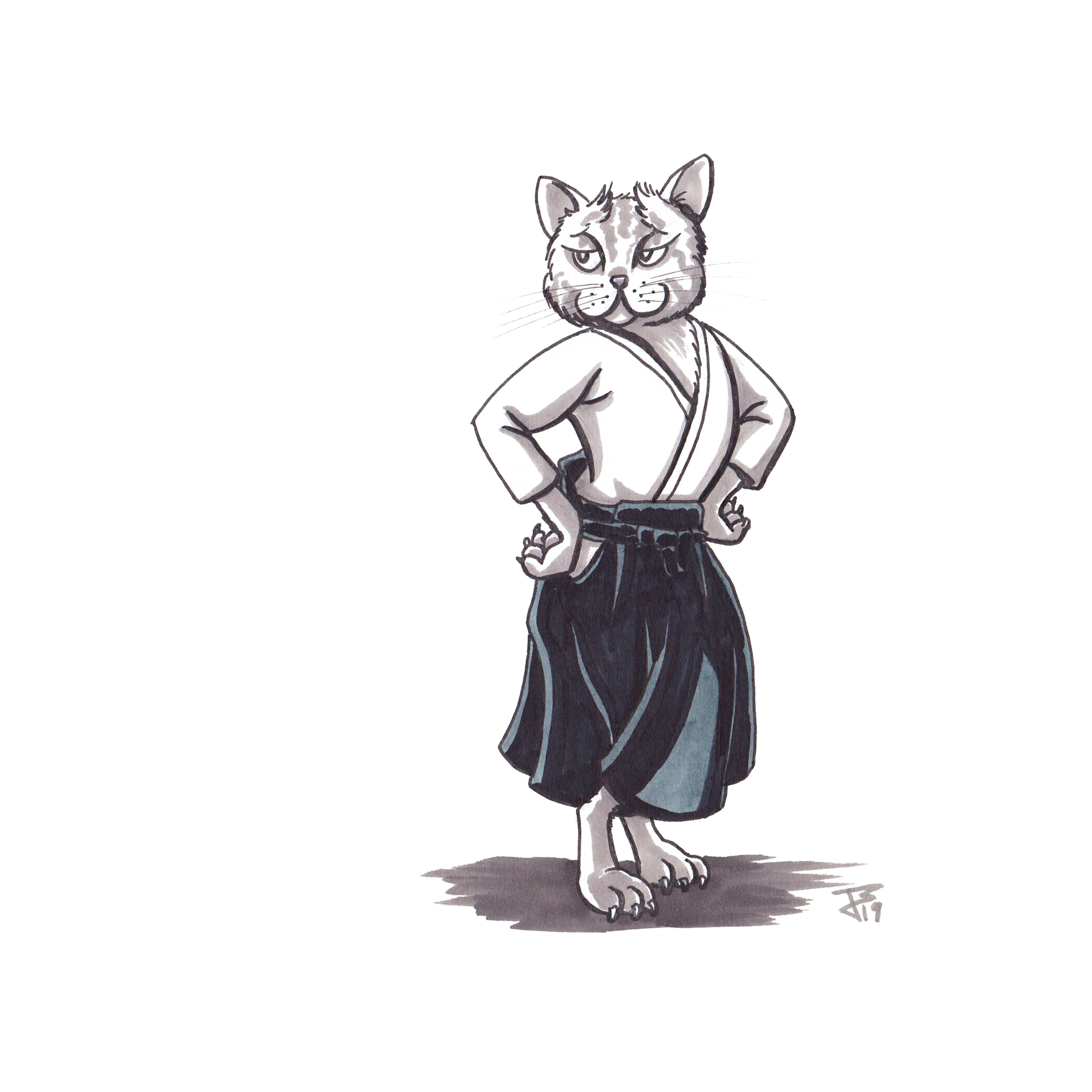 Aikido Animals_093